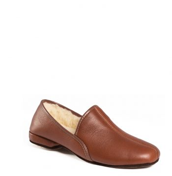 slippers__0019_rex100